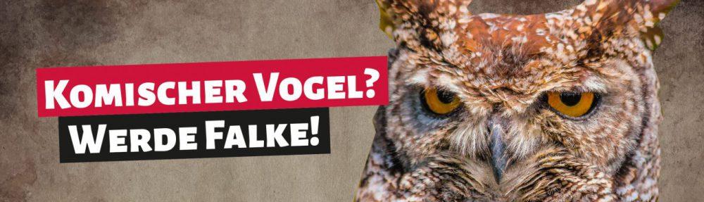 Sozialistische Jugend Deutschlands – Die Falken